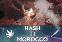 Morocco: a hash superpower (Short Docu)
