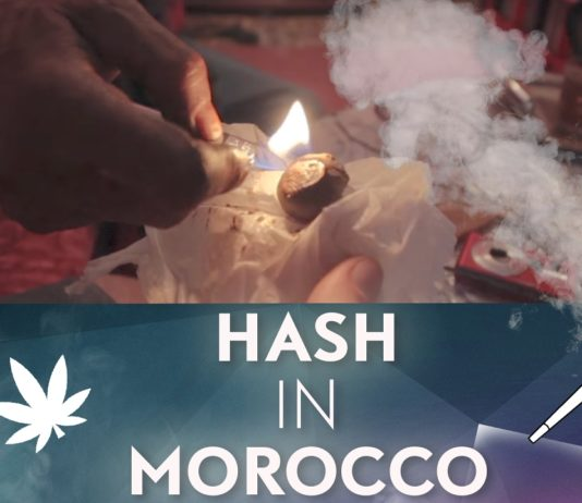 Morocco: a hash superpower (Short Docu)