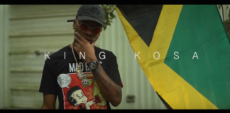 King Kosa feat Konshens & Shenseea - Best NaNa