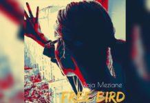 Raja Meziane Free Bird