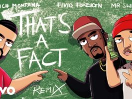 French Montana feat Fivio Foreign, Mr. Swipey That's A Fact Remix