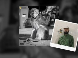 LJasos - Monkey Clash Nessyou