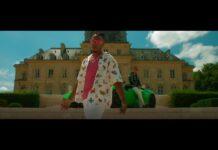DJ Kayz feat Niska Monte le son